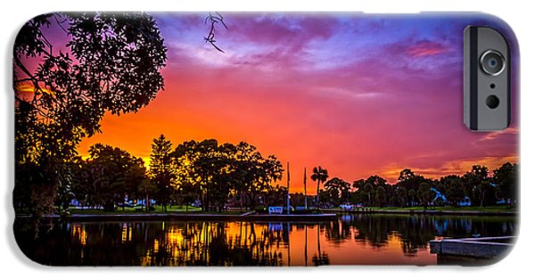 Bayou iPhone Cases - The Bayou iPhone Case by Marvin Spates