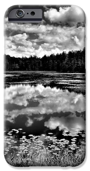 The Beautiful Fly Pond on Rondaxe Road - Old Forge NY iPhone Case by David Patterson