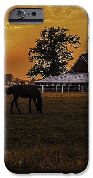 The Beauty of a Rural Sunset iPhone Case by Mary Carol Story