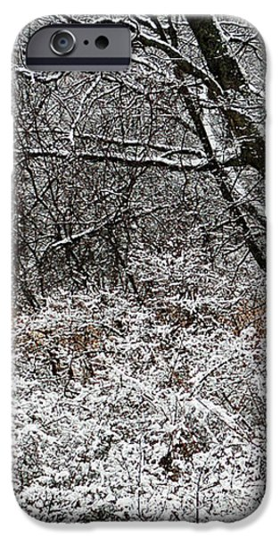 The Beauty of Winter iPhone Case by Aimee L Maher Photography and Art