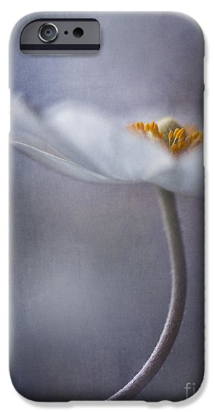 Flower Blossom iPhone Cases - The Beauty Within iPhone Case by Priska Wettstein