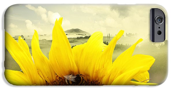 Sunflower Photograph iPhone Cases - The bee iPhone Case by Les Cunliffe