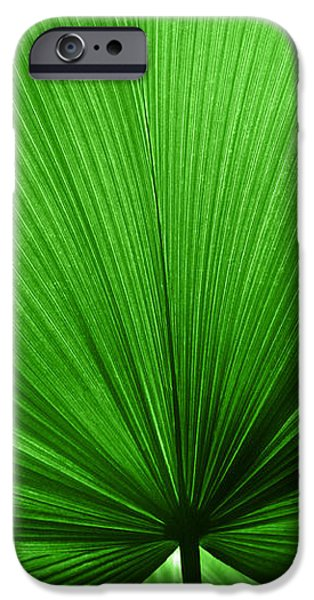 The Big Green Leaf iPhone Case by Natalie Kinnear