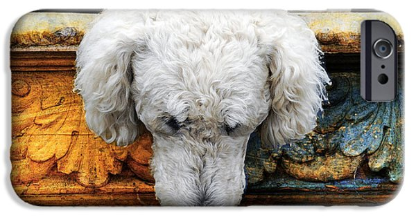 Dogs Digital iPhone Cases - The Big Water Bowl iPhone Case by Judy Wood