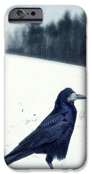 Crows iPhone Cases - The Black Crow Knows iPhone Case by Edward Fielding
