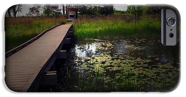 Nature Center Pond iPhone Cases - The Boardwalk iPhone Case by Cedric Hampton