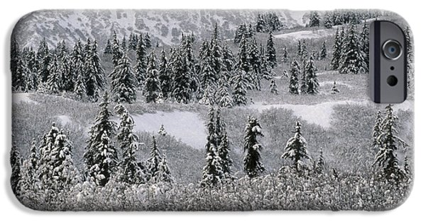 Winter Storm iPhone Cases - The Boreal Forest In Winter iPhone Case by Ron & Nancy Sanford
