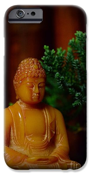 Inner Peace iPhone Cases - The Buddha Knows iPhone Case by Paul Ward