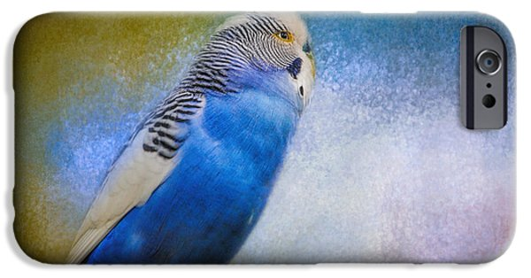 Parakeet iPhone Cases - The Budgie Collection - Budgie 2 iPhone Case by Jai Johnson