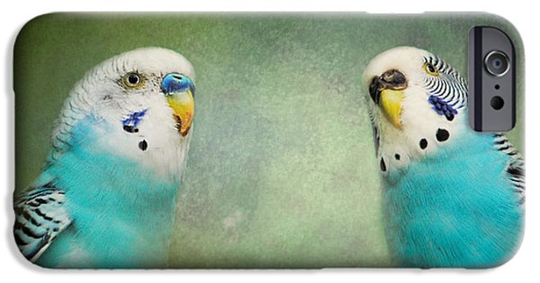 Parakeet iPhone Cases - The Budgie Collection - Budgie Pair iPhone Case by Jai Johnson