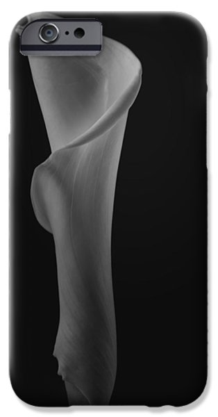 Painter Photographs iPhone Cases - The Calla Lily Flower in Black and White iPhone Case by David Haskett