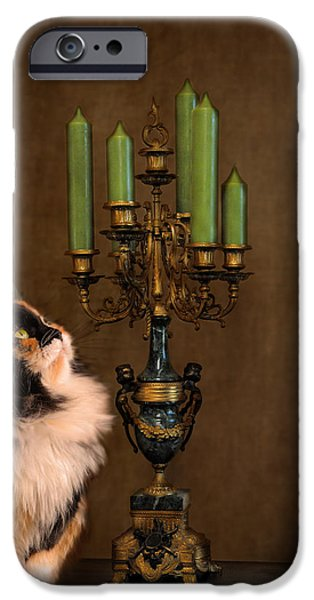 The Cat and the Candelabra iPhone Case by Jai Johnson
