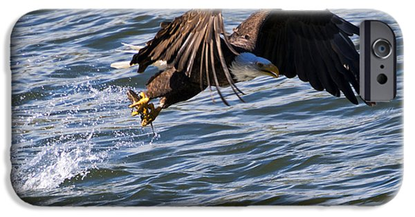 Flight iPhone Cases - The Catch iPhone Case by Mike Dawson