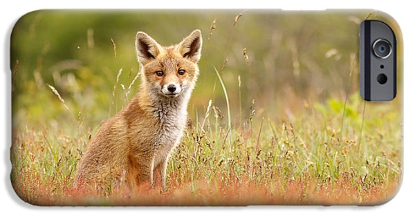 Afternoon iPhone Cases - The Catcher in the Sorrel iPhone Case by Roeselien Raimond