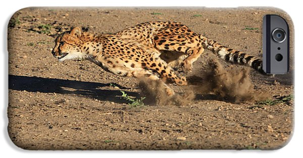Wild Animals iPhone Cases - The Chase iPhone Case by Donna Kennedy