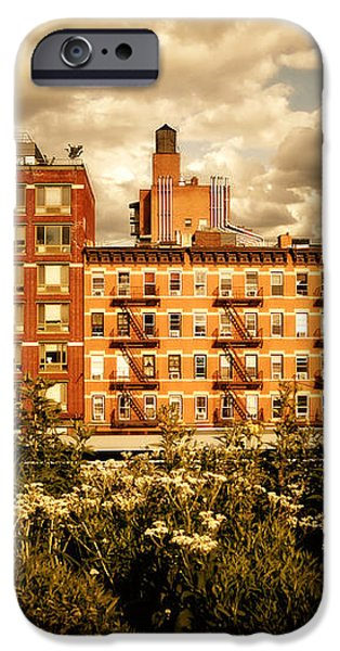 The Chelsea Skyline - High Line Park - New York City iPhone Case by Vivienne Gucwa