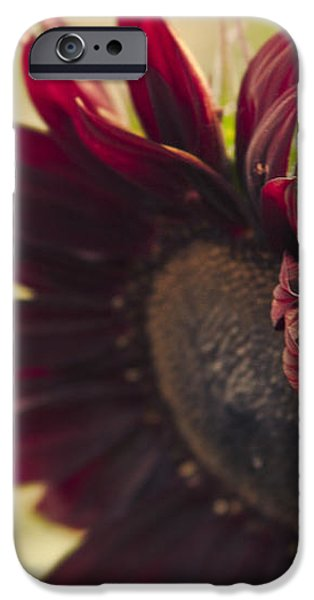 The Child of Nature iPhone Case by Sharon Mau