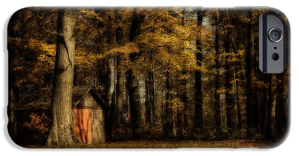 Shed iPhone Cases - The Clearing iPhone Case by Lois Bryan