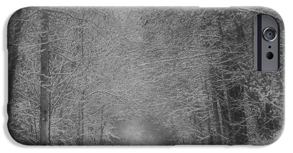 Snowy iPhone Cases - The cold grip of winter iPhone Case by Karen Cook