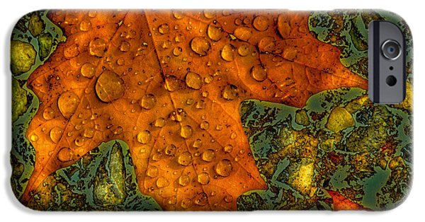 Surreal Landscape iPhone Cases - The Colors of Autumn iPhone Case by David Patterson