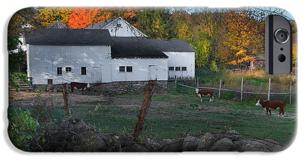 Connecticut Farm iPhone Cases - The Connecticut Outback iPhone Case by Bill  Wakeley