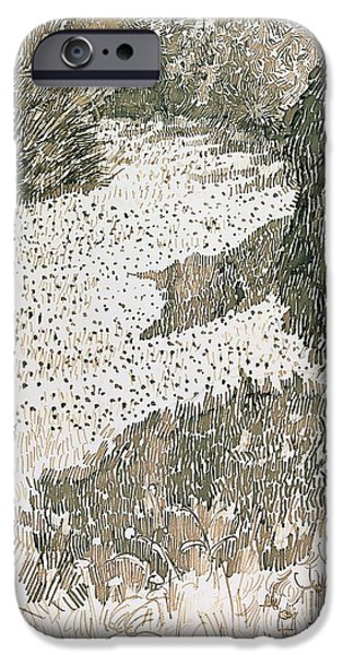 Grass Drawings iPhone Cases - The Corner of the Park iPhone Case by Vincent van Gogh