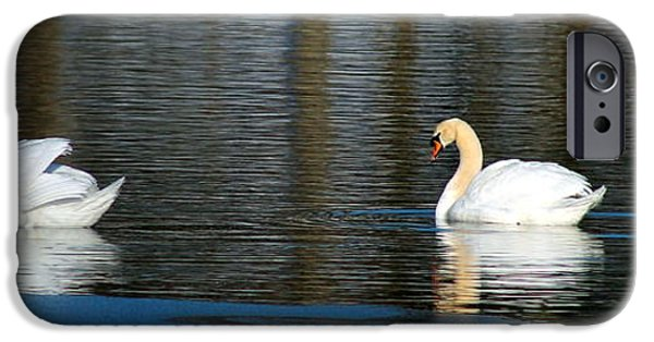 Swans... iPhone Cases - The Couple iPhone Case by Lori Rossi