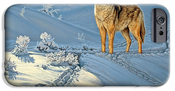 Paintings iPhone Cases - the Coyote - Gods Dog iPhone Case by Paul Krapf