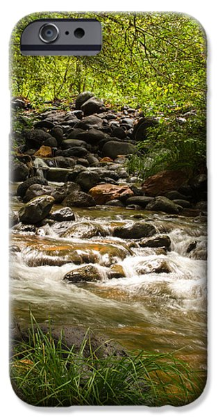 Creek iPhone Cases - The creek in motion iPhone Case by Surpriya Tike