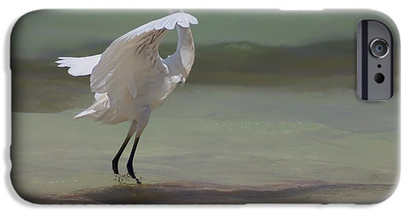 Flight iPhone Cases - The Dance iPhone Case by John Edwards
