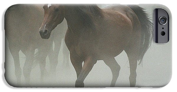 Horse iPhone Cases - The daughters of a Desert iPhone Case by Angel  Tarantella