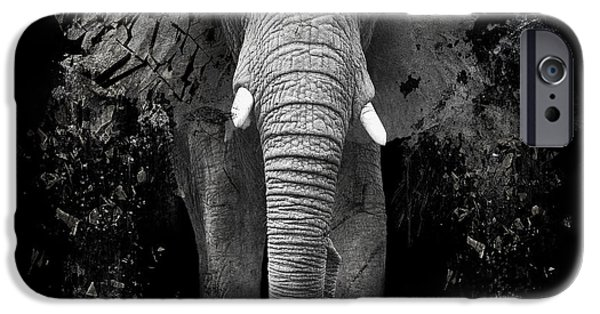 Fauna iPhone Cases - The Disappearance of the Elephant iPhone Case by Erik Brede