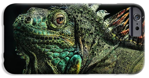 Iguana iPhone Cases - The Dragon iPhone Case by Joachim G Pinkawa