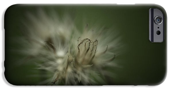Dreamy iPhone Cases - The Dream Within iPhone Case by Shane Holsclaw