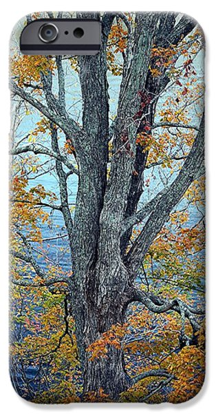 States Tapestries - Textiles iPhone Cases - The Dress of Autumn - Lake Cumberland KY iPhone Case by Thia Stover