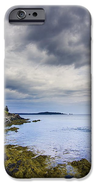 The eastern most point in the U.S.A  iPhone Case by Mircea Costina Photography