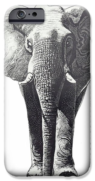 Elephant Drawings iPhone Cases - The Elephant iPhone Case by Kean Butterfield