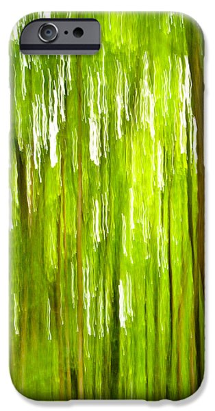 Bill Gallagher iPhone Cases - The Emerald Forest iPhone Case by Bill Gallagher