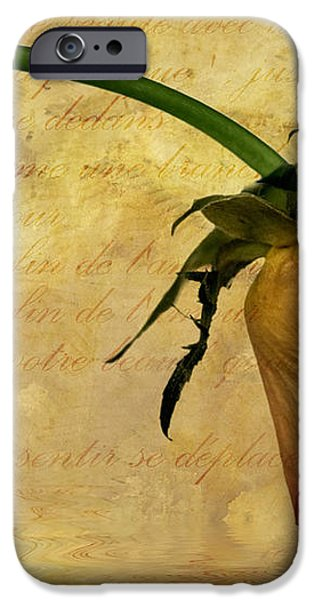 the end of love iPhone Case by John Edwards