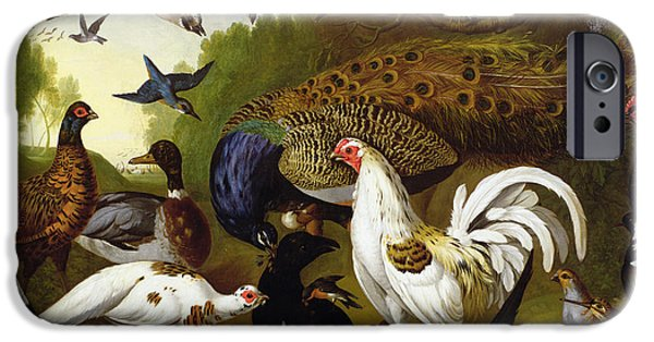 Bird Photographs iPhone Cases - The Fable Of The Raven With A Peacock, Cockerel, Woodpecker, Jay, Woodcock, And Magpie iPhone Case by Pieter Casteels