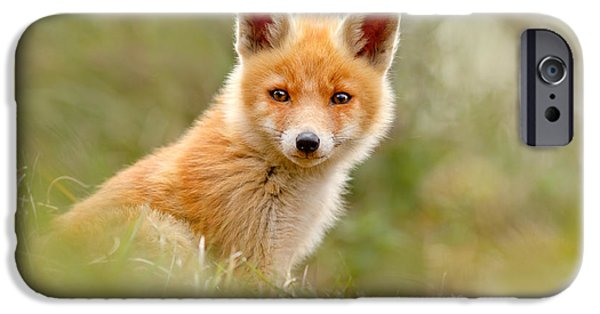 Innocence Photographs iPhone Cases - The Face of Innocence _ Red Fox Kit iPhone Case by Roeselien Raimond