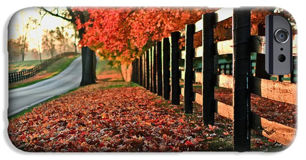 Fall iPhone Cases - The Fallen iPhone Case by Fareed Khan
