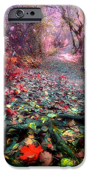 Tree Roots iPhone Cases - The Fallen Leaves iPhone Case by Tara Turner