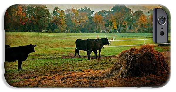 Autumn In The Country iPhone Cases - The Far Side iPhone Case by Diana Angstadt
