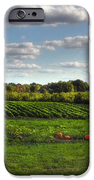 Farm Stand Photographs iPhone Cases - The Farm iPhone Case by Joann Vitali