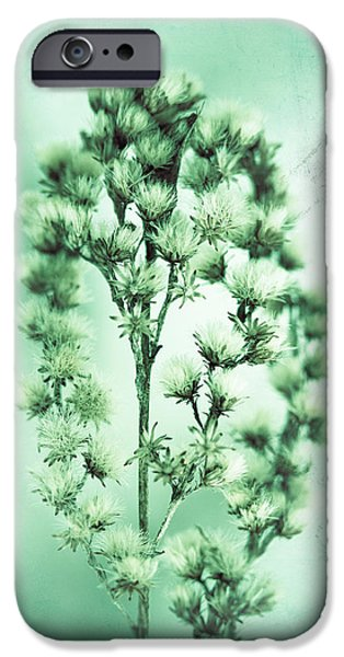 Plants iPhone Cases - The Feeling Only Grows Stronger iPhone Case by Shane Holsclaw