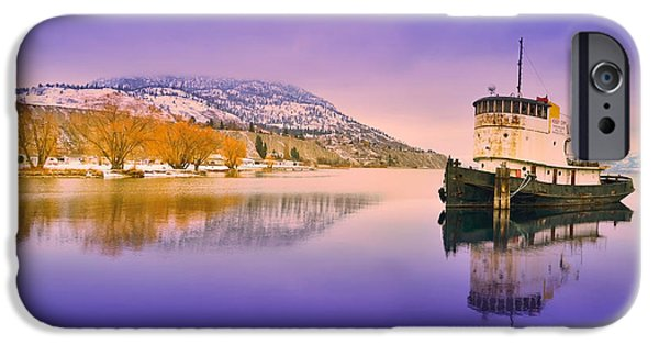 Willow Lake iPhone Cases - The First Day of the New Year iPhone Case by Tara Turner