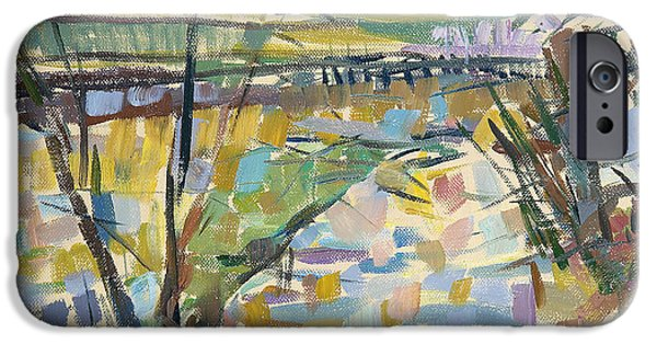 River iPhone Cases - The Flooded Cherwell From Rousham I Oil On Canvas iPhone Case by Erin Townsend