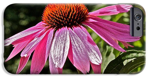 Prescott iPhone Cases - The Flower iPhone Case by Mark Prescott Crannell
