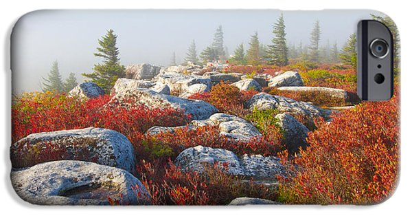 Sod iPhone Cases - The Fog Clears at Dolly Sods iPhone Case by Bill Swindaman